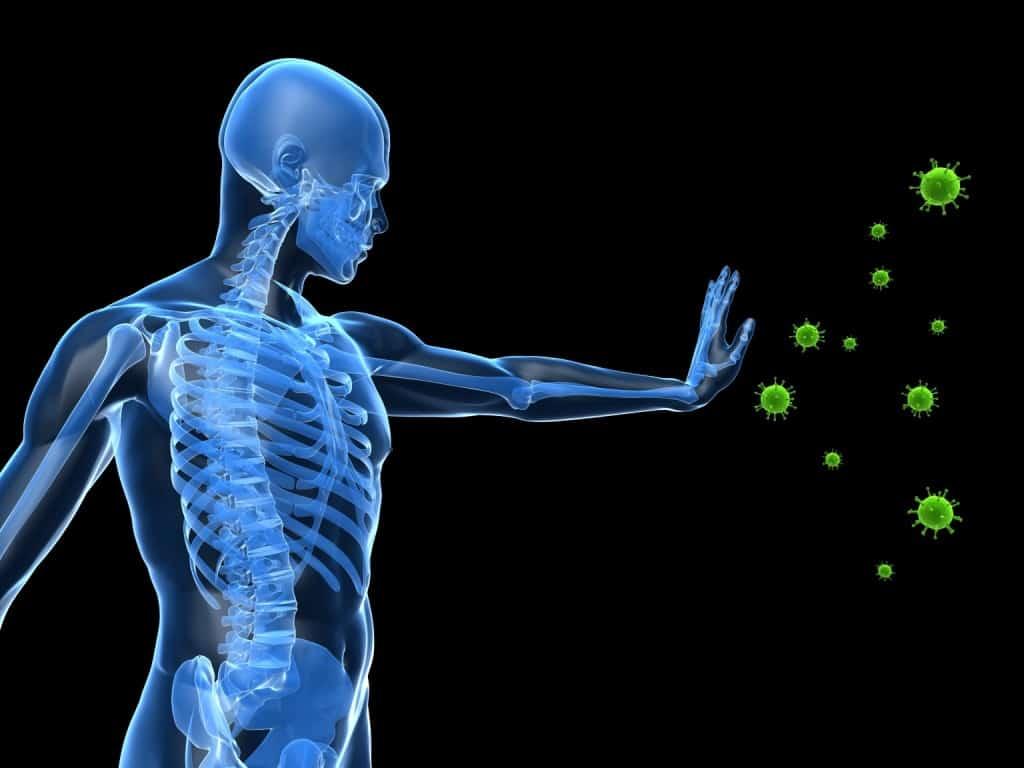 Δυνατό ανοσοποιητικό σύστημα