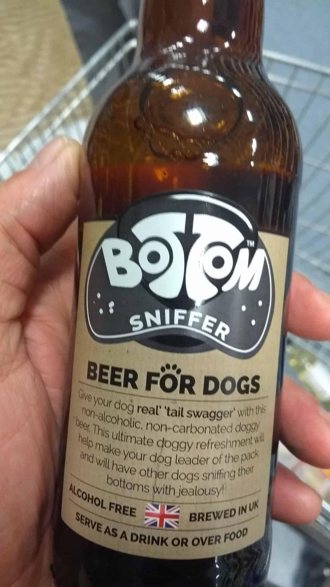 Μπύρα για σκύλους και γάτες