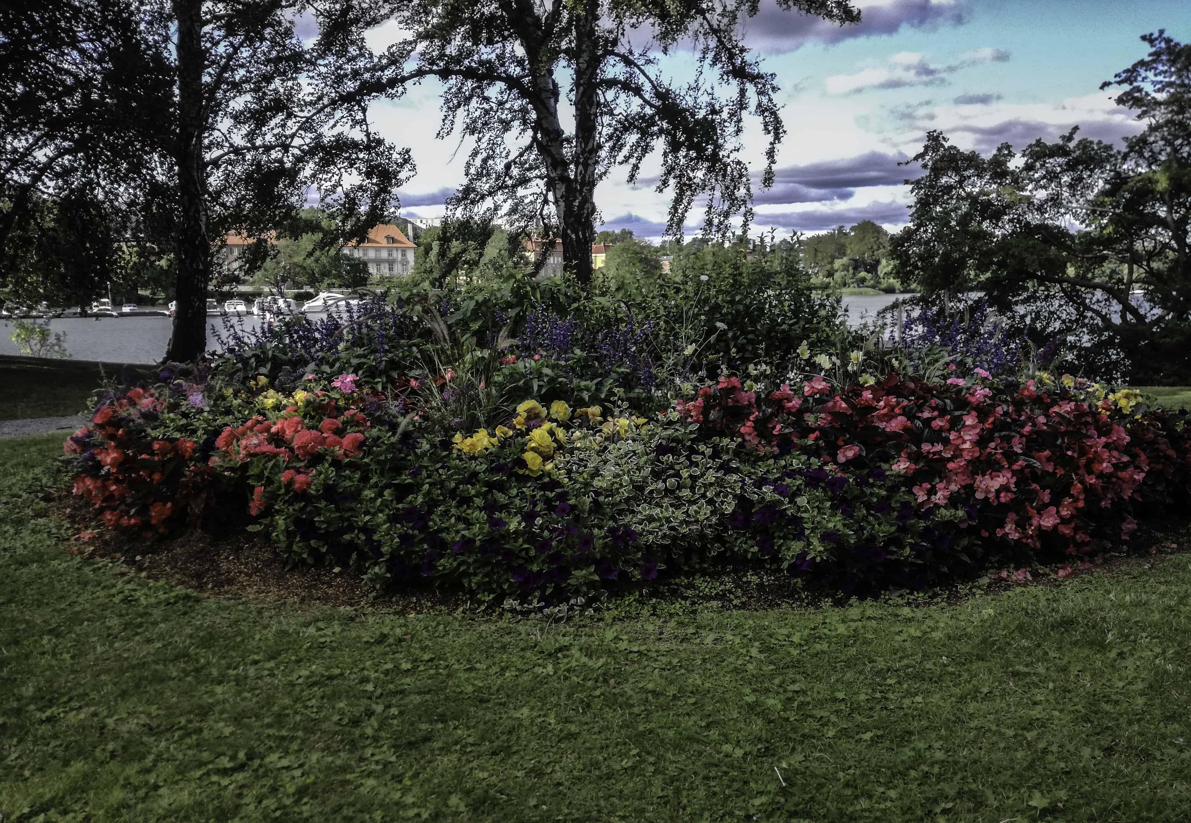 Τα λουλούδια έχουν την τιμητική τους στην Στοκχόλμη