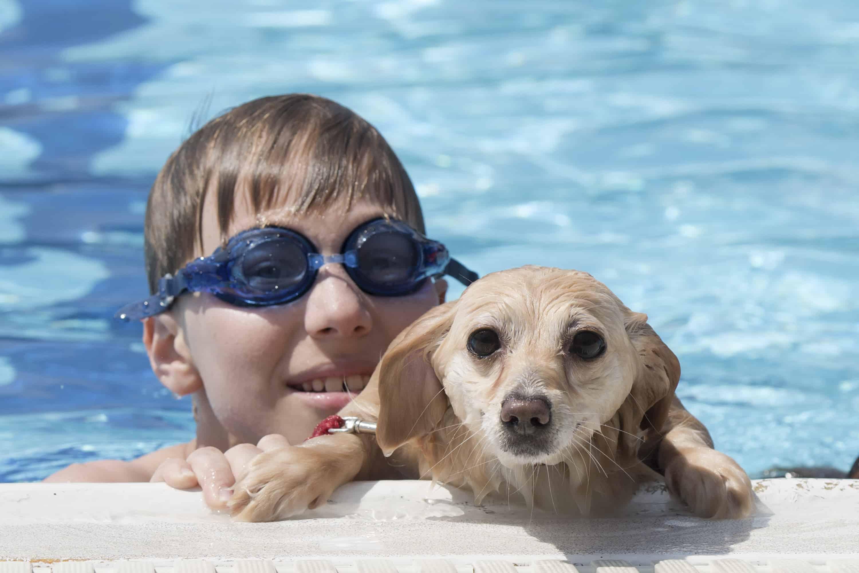 Τα καλύτερα σκυλιά για παιδιά και οικογένεια