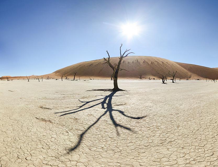 ερημοποίηση και ξηρασία